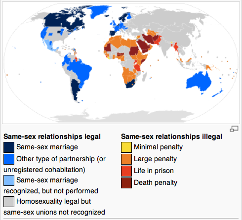 from Cason how many countries legalized gay marriage