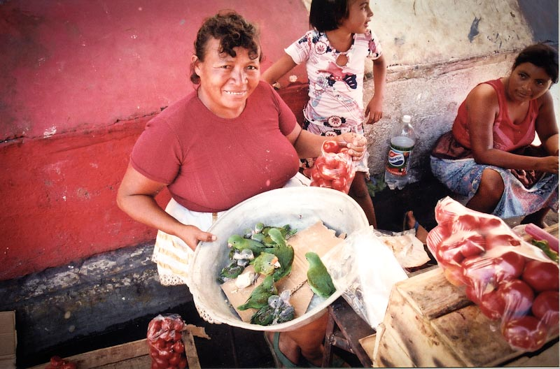 A market in El Salvador, which has the highest rate of homicide against women in the world. (Photo from Flickr by Jpeg Jedi)