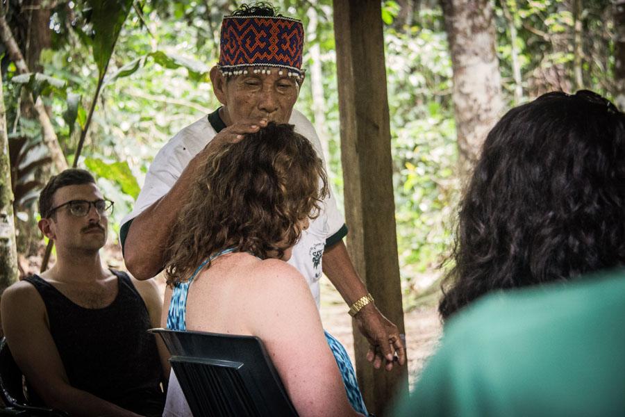 ayahuasca seattle washington 3 the seattle globalist